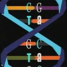 The Ghost in Your Genes (Våra gener)