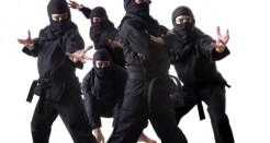 Ninja – Nattens tysta krigare